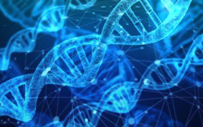 China incentiva el desarrollo del sector salud y biotecnológico *